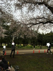 駒沢公園,犬,フレンチブルドッグ,愛犬,ブランド楽市,駒沢店