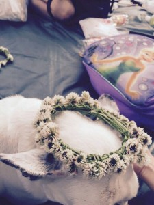 シロツメクサ,冠,手作り,花飾り,