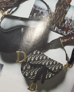 クリスチャンディオール,Christian Dior,サドルバ
